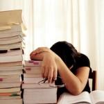 Si dovrebbe studiare