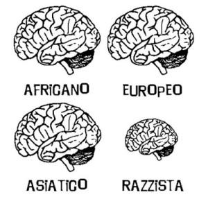Razzismo cervelli